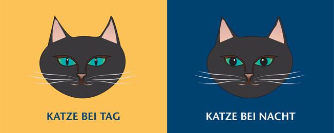 Illustration Vergleich Katzenaugen bei Tag und bei Nacht